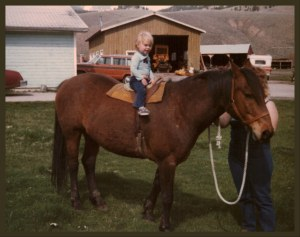My mom's horse Thumbtack, my 2 sisters and I all learned to ride on him. I was 2 in this picture