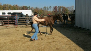 Trailer load demo at Circle C Cowboy Church colt starting competition and clinic 2011.