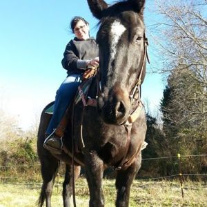 Just out enjoying a winter ride on my pony Fireman.