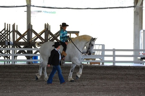 Judging at the Reinbow Riders open show at Tri-State arena in Cleveland, Tennessee. Photo courtesy of Christina Simmerman.