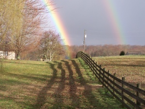 Rainbow after the rain in Tennessee